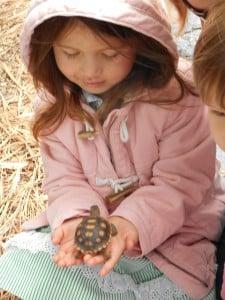 11 girl with baby tortoise